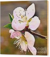 Peach Blossoms 1 Wood Print