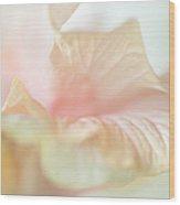 Peach Delicacy. Hibiscus Macro Wood Print by Jenny Rainbow