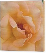 Peach Enchantment Wood Print