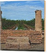 Peach Orchard And Ruins Wood Print