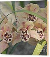 Peach Pastel Palette Wood Print