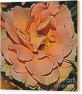 Peach Rose - Digital Paint Wood Print