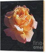 Peach Rose Palm Desert Wood Print