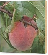 Peach For Harvest   # Wood Print