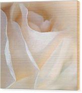 Peaches And Cream Rose Flower Wood Print