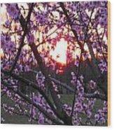 Peachy Sunset 2 Wood Print