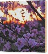 Peachy Sunset 3 Wood Print