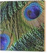 Peacock Eye And Sword Wood Print