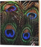 Peacock Eye Feathers Wood Print