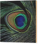 Peacock Eye Wood Print