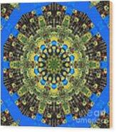 Peacock Feathers Kaleidoscope 9 Wood Print