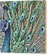 Peacock Wood Print by Karen Walzer