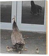 Peacock Mom And Kids 1 Wood Print