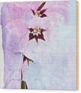 Peacock Orchids Wood Print