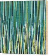 Peacock Spikes Wood Print
