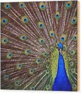 Peacock Squared Wood Print