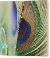 Peacocks Dance The Samba Wood Print