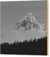 Peaking Up Wood Print