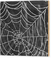 Pearl Web Wood Print