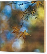 Pearlescent Acers Wood Print
