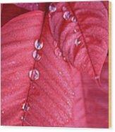 Pearls On Poinsettia Wood Print