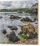 Pebble Bay Wood Print