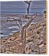 Pebble Beach 4 Wood Print