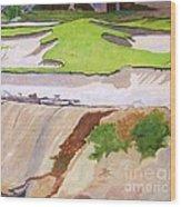 Pebble Beach Sand Wood Print