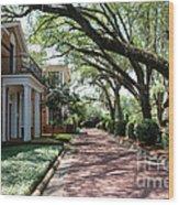 Pebble Hill Plantation Walkway Wood Print
