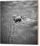 Pebble In The Water Monochrome Wood Print