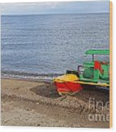 Pedalo On The Shore Of Lake Issyk Kul In Kyrgyzstan Wood Print