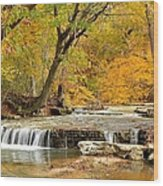 Pedelo Falls Wood Print
