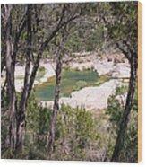 Pedernales River Pool In August Wood Print