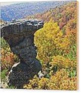 Pedestal Rock Wood Print