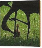 Peek-a-boo Crane Wood Print