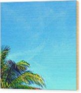 Peekaboo Palm - Tropical Art By Sharon Cummings Wood Print
