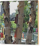 Peeling Bark Wood Print
