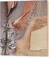 Peeling Bark - Horizontal Wood Print