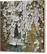 Peeling Paint Wood Print