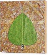 Peepal  Wood Print