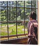 Peering Out The Window Wood Print