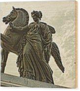 Pegasus Two Wood Print