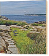 Peggy's Cove From Lighthouse-ns Wood Print