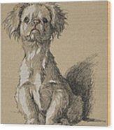Peke, 1930, Illustrations Wood Print