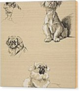 Pekes, 1930, Illustrations Wood Print