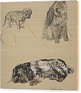 Pekinese, Chow And Spaniel, 1930 Wood Print