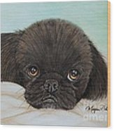 Buddy The Pekingese Wood Print