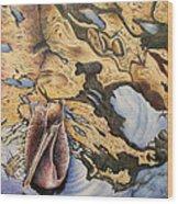 Pelican 4 Wood Print