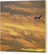 Pelican Against The Golden Sky Wood Print