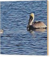 Pelican And Gull Wood Print